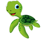 turtle transparent.png