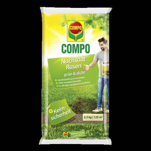COMPO SAAT Nachsaat Rasen grün und dicht 2,5kg für 125m²