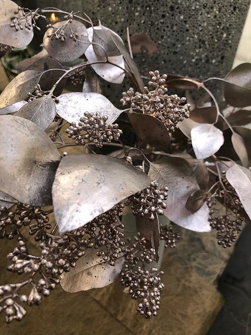 Eucalyptus rose, per Stiel