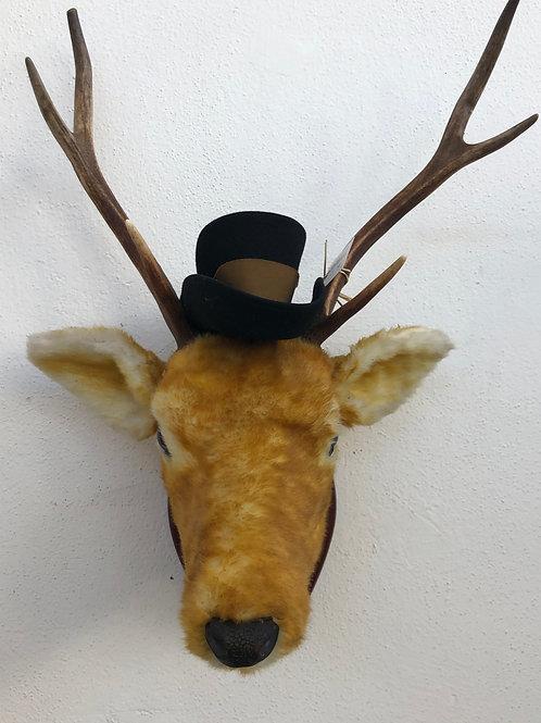 Hirsch mit Hut