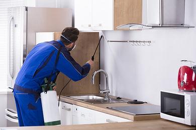 technik pogotowia ddd wykonuje zabieg dezynsekcji w mieszkaniu