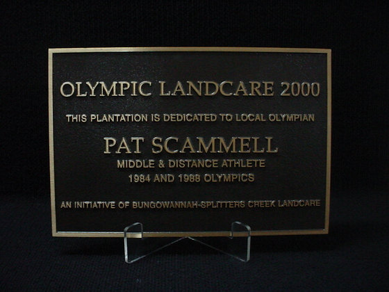 Bronze Cast plaque - 600mm x 400mm ( A2 )