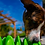 Thumbnail: Company of Animals Slow Feeder