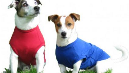 Hotterdog T Shirt Body