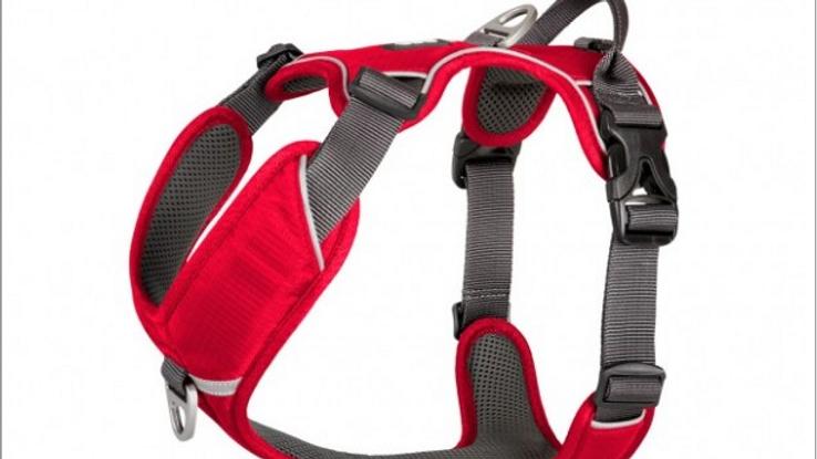 Dog Copenhagen Comfort Walk Pro Harness