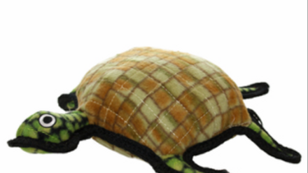 Tuffy Timmy the Turtle