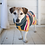 Thumbnail: Ruff & Tumble Design Drying Coat