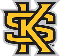 Kennensaw_State_wordmark.png