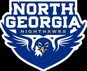North_Georgia_Nighthawks_logo.svg.png