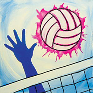 Vibrant Volleyball