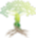 Tree Logo Homeo.png