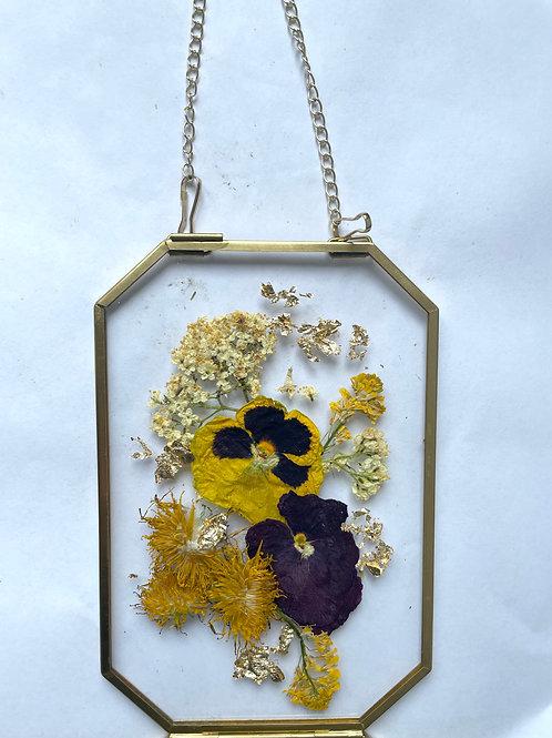 Pansies and Dandelions flowers