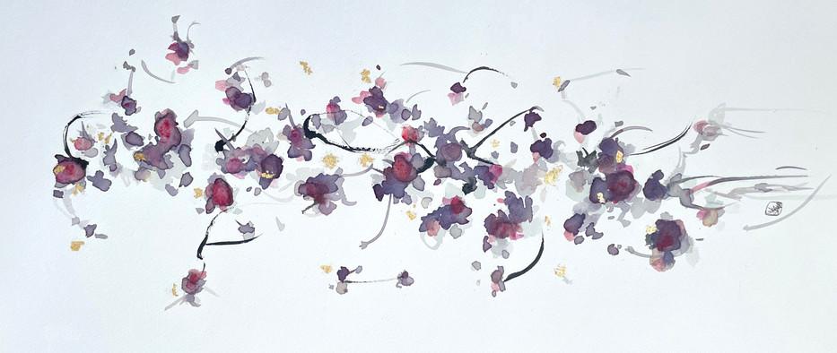 Hibiscus No.17