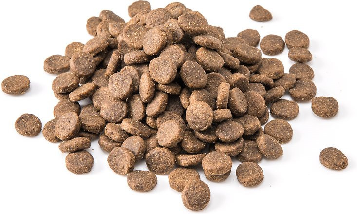 https://healthypets.mercola.com/sites/healthypets/archive/2017/10/13/beans-processed-pet-food.aspx?utm_source=petsnl&utm_medium=email&utm_content=art1&utm_campaign=20171013Z1&et_cid=DM164769&et_rid=85376748