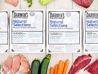 Darwin Dog Food  Recall