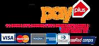 webpay-logo-1.png