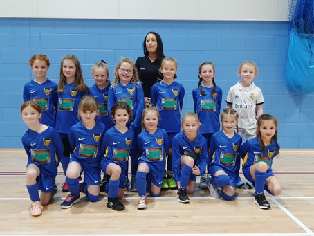 Beauty In The Barn Sponsor New u7 Lionesses!!