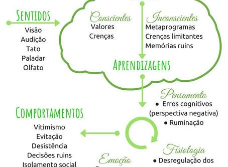 Modelo de Funcionamento da Depressão