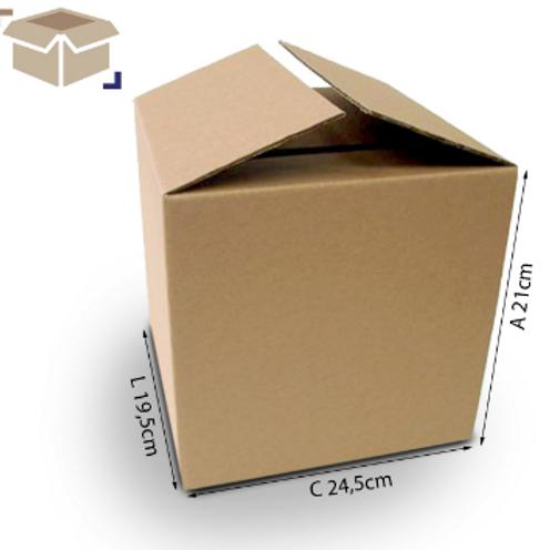 Caixa Transporte E 24,5 cm x 19,5 cm x 21 cm - DELLA
