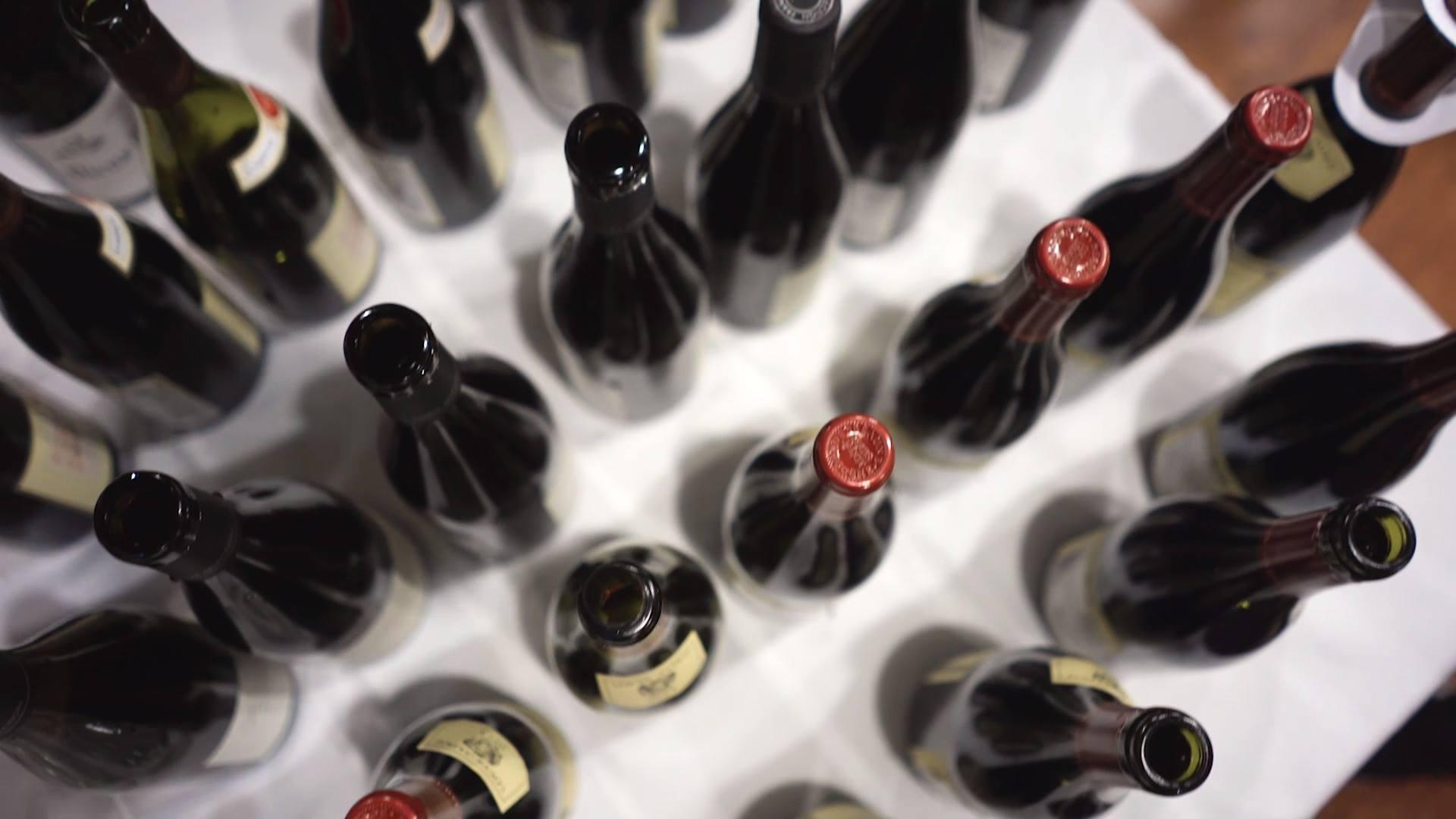 דרך היין צילום אירוע פתיחה