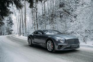 Bentley Winter