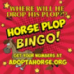 Horse plot bingo graphic V5.jpg