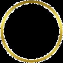gold-circle-png-transparent-2_edited_edi