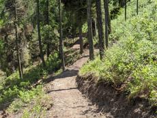 Speak up for trails on City Land