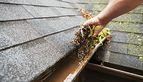 Boise gutter cleaning, gutter clog removal, gutter repair, clean gutters, clean rain gutters, rain gutter cleaning, The Shine Guys by Silver Bells, The Shine Guys, exterior cleaning, house cleaning, spring cleaning, fall cleaning, leaf removal