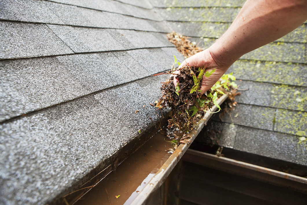 rpr services, man cleaning gutters, handyman gutter cleaning