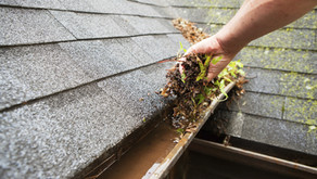 Spring Cleaning For Your Roof