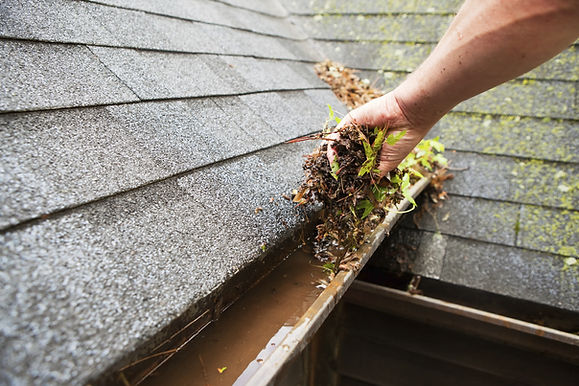 Greensboro Gutter Cleaning Service. This image shows us cleaning a gutter.