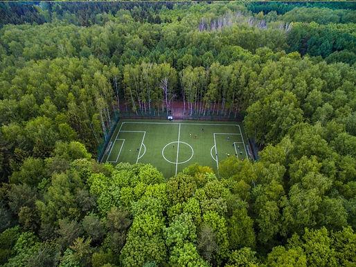 Meshchershy Park, Russa.jpg