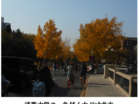 <北京・洛陽紀行>2019年11月4日(初日)