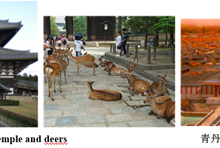 Topics of Japanese history-Nara, the capital older than Kyoto (710 - 794)