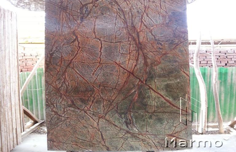 Forest Brown (3).jpg