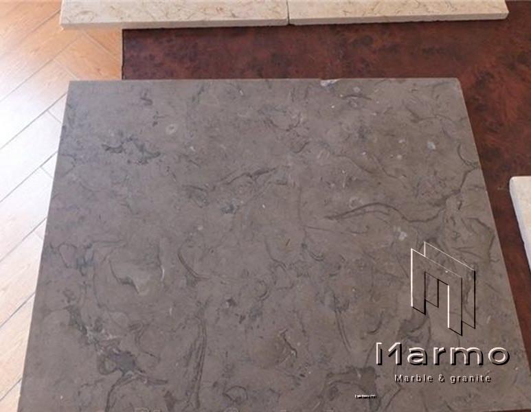 Melly grey fossils (3).jpg