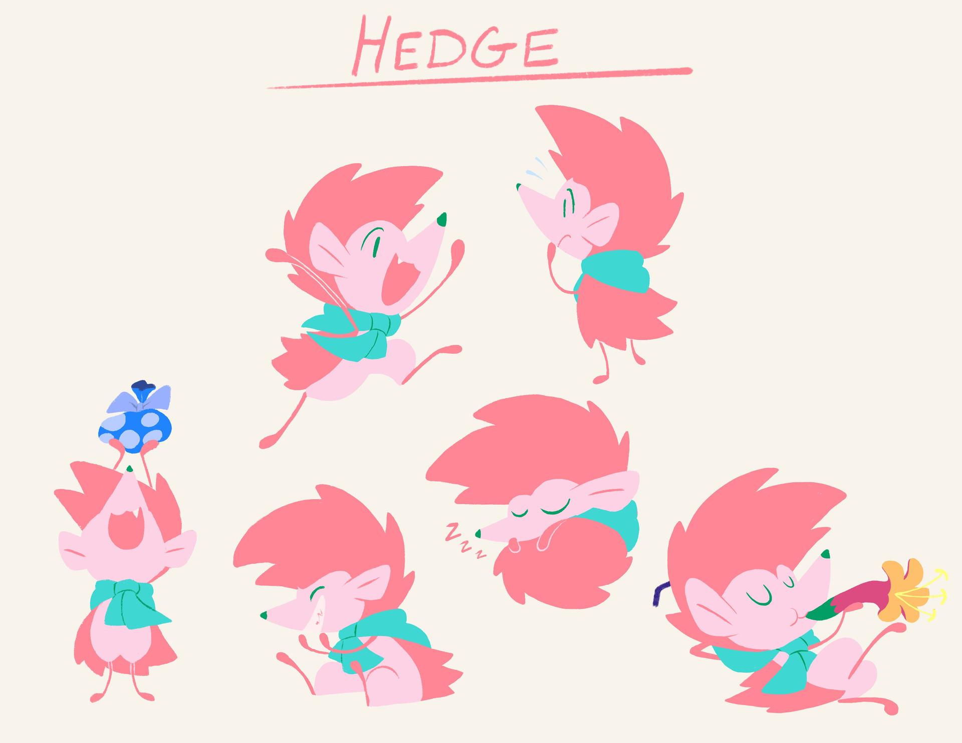 HP_-_Pitch_-_Hedge.jpg