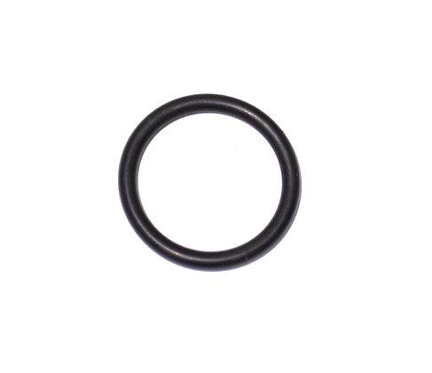 Anel de vedação Monometro Hatsan PCP (2302)