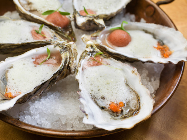 Don Sanchez_localoysters.jpg