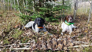 Michigan Grouse Hunters Cover Photo.jpg