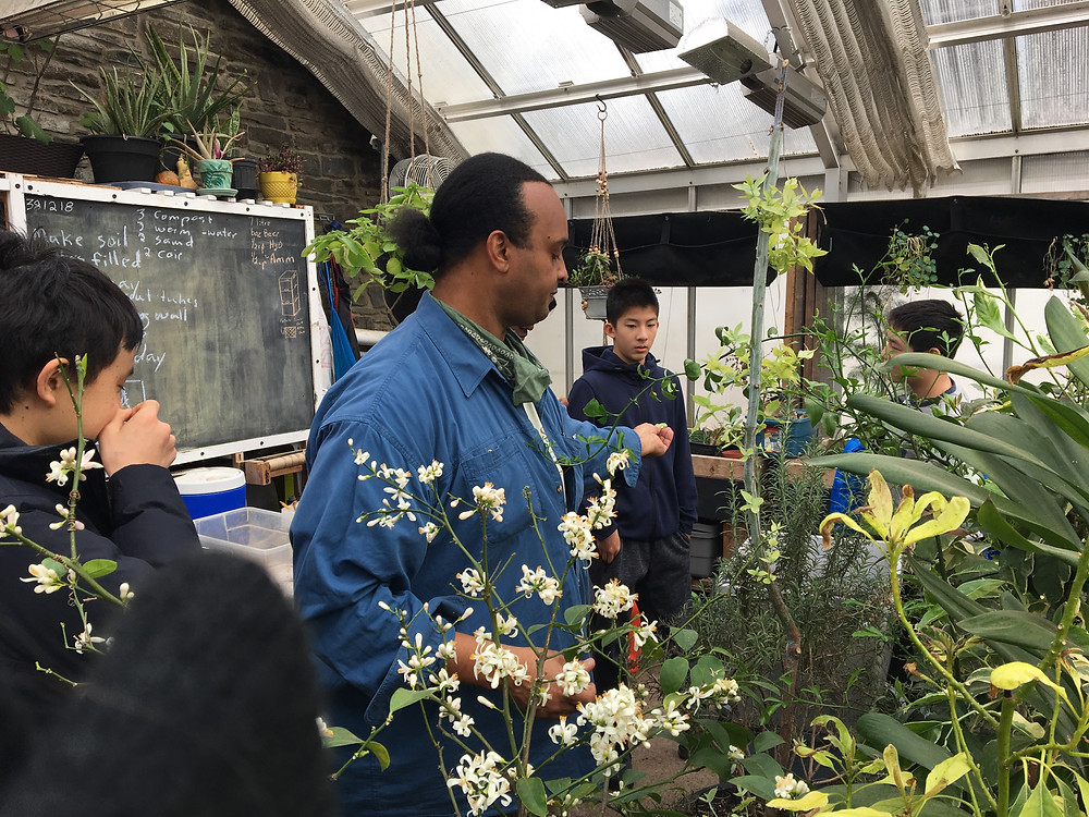 Facilitator with three students engaging with plants in greenhouse.