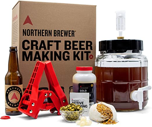 Best of the Low Cost Kits, best beer kits of 2020