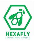 hexafly logo 2016.jpg