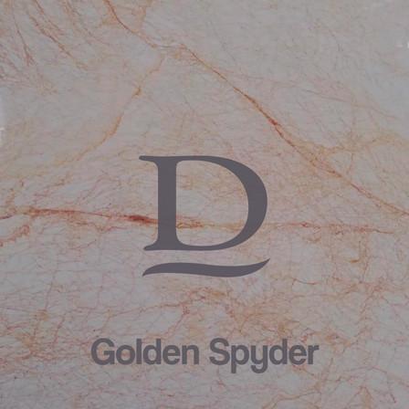 golden spyder.jpg