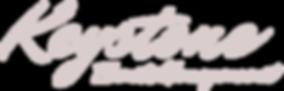 KEM Logo Grey.png