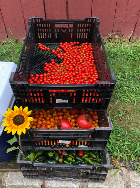 On-Site Farm Stand