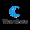 Waveform Logo.png