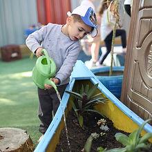 childcare kindy preschool long day care friends social activities fun games children plants trees gardnering watering
