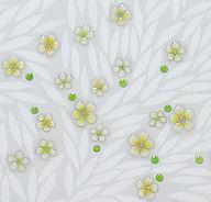 梅花藻部分拡大.jpg
